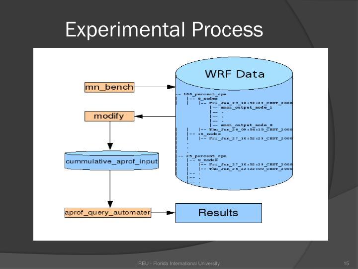 Experimental Process