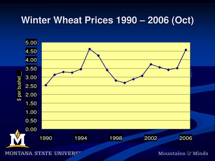Winter Wheat Prices 1990 – 2006 (Oct)