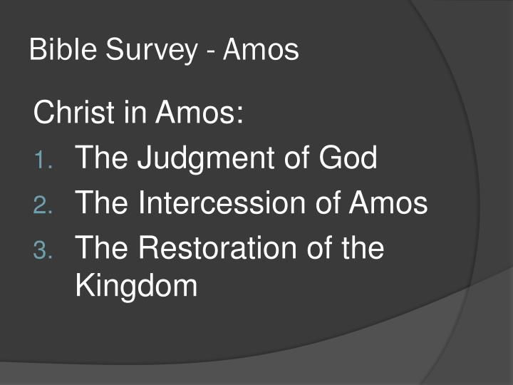 Bible Survey - Amos