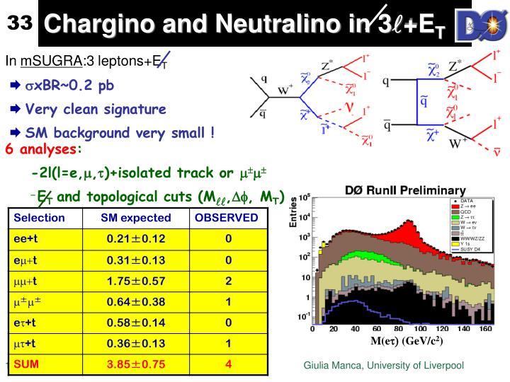 Chargino and Neutralino in 3