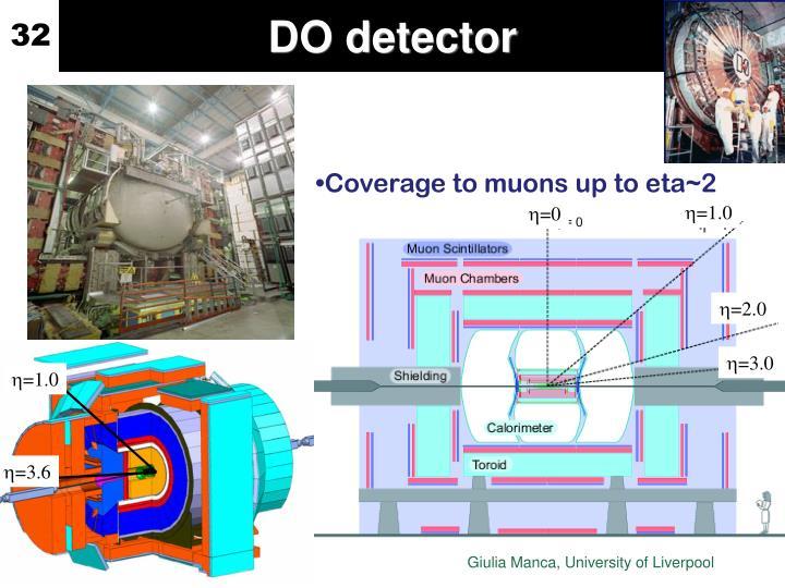 DO detector