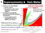 supersymmetry dark matter1