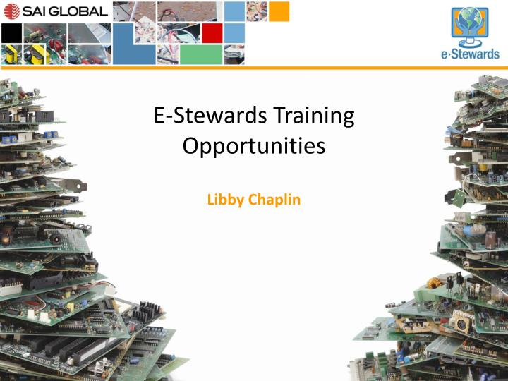 E stewards training opportunities