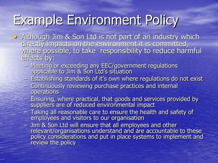Example Environment Policy