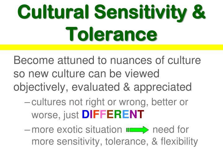 Cultural Sensitivity & Tolerance