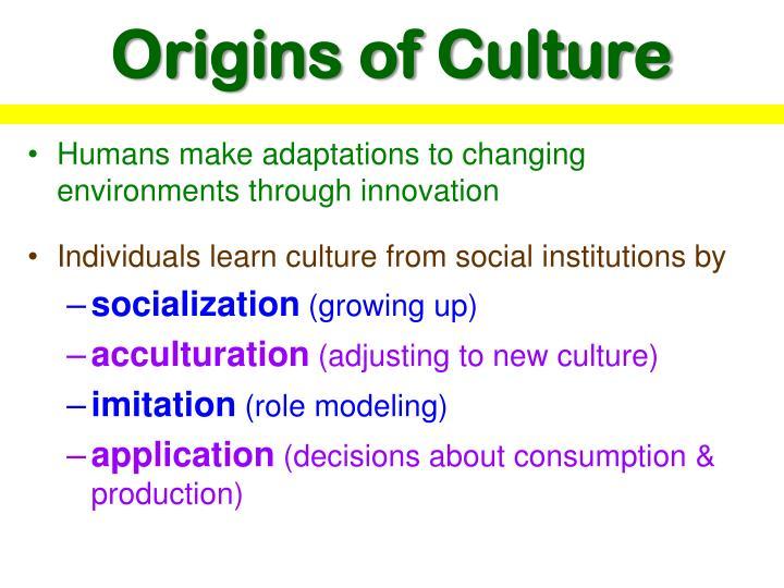 Origins of Culture