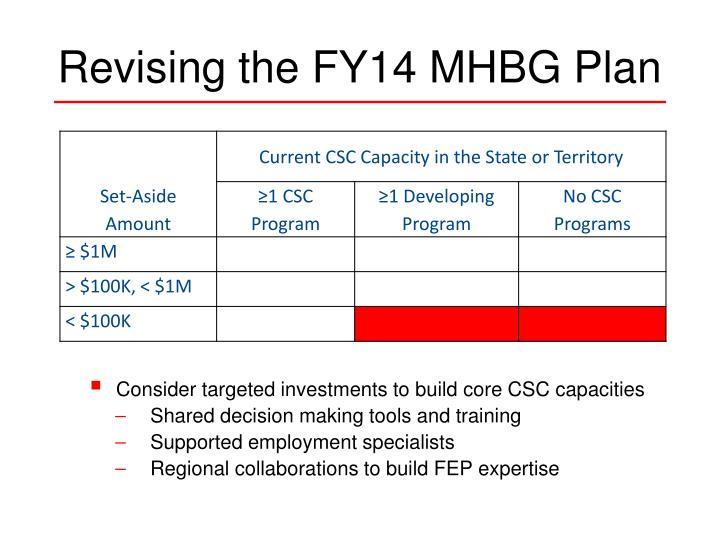 Revising the FY14 MHBG Plan