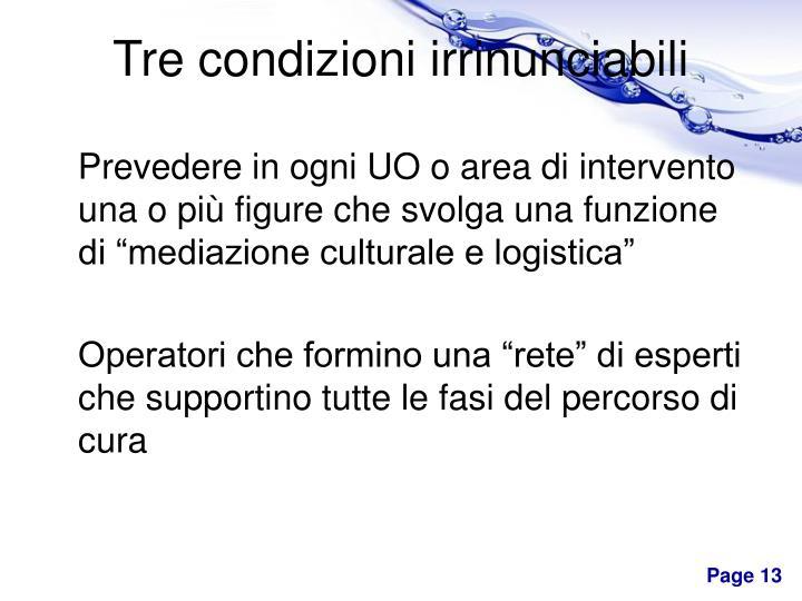 """Prevedere in ogni UO o area di intervento una o più figure che svolga una funzione di """"mediazione culturale e logistica"""""""