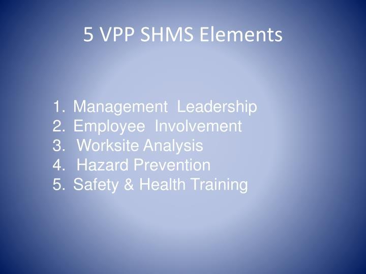 5 VPP SHMS Elements