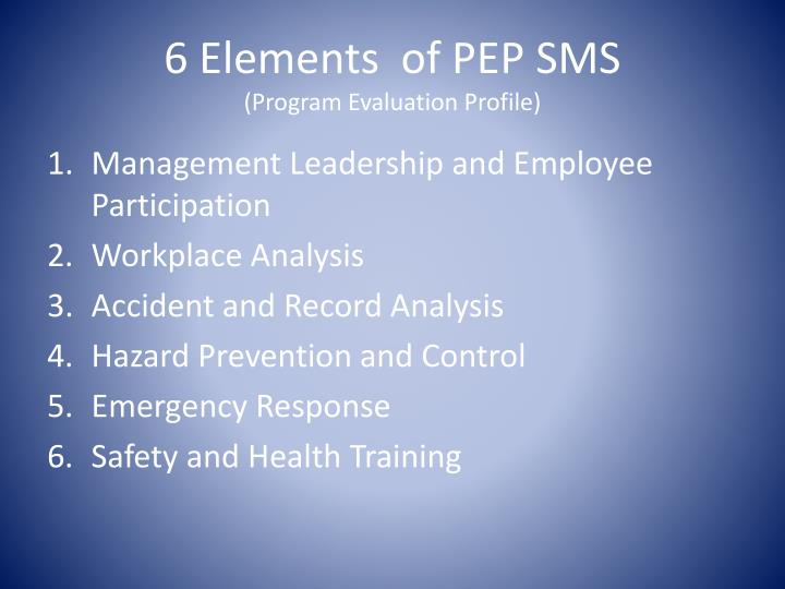 6 Elements  of PEP SMS