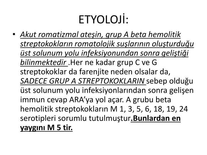 ETYOLOJ: