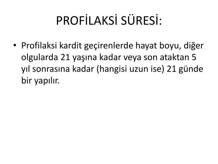 PROFLAKS SRES: