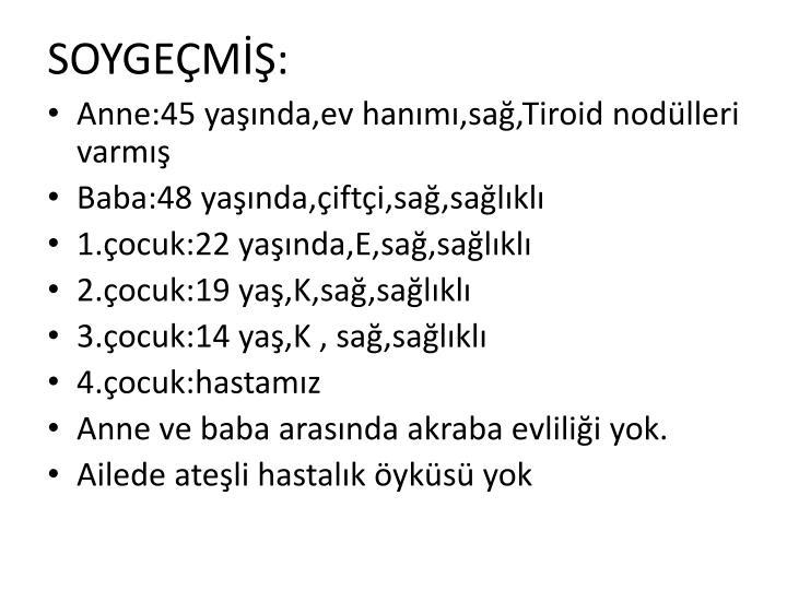 SOYGEM: