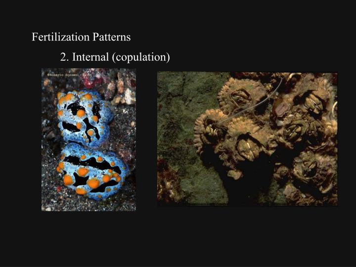 Fertilization Patterns