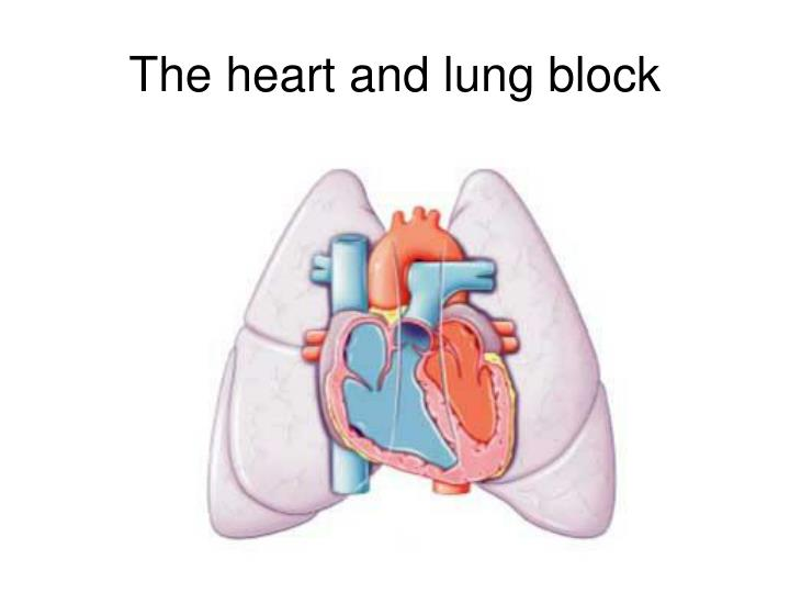 The heart and lung block