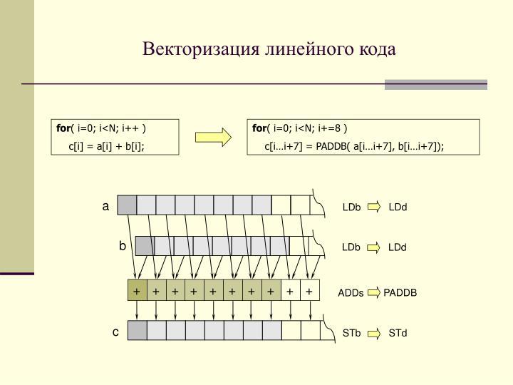 Векторизация линейного кода