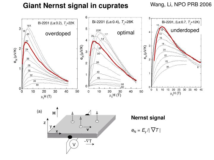 Giant Nernst signal in cuprates