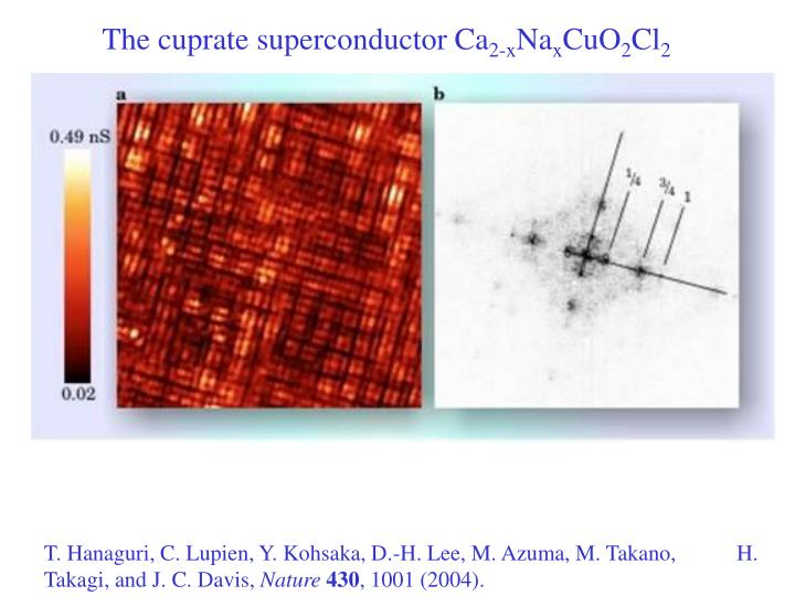 The cuprate superconductor Ca