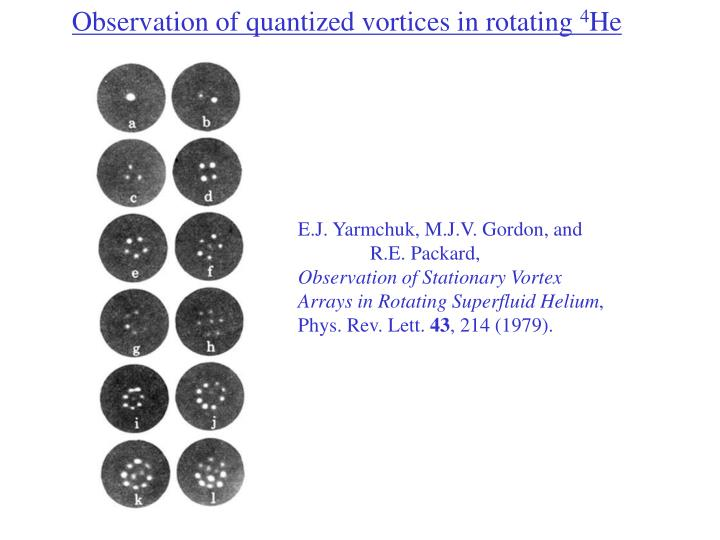 Observation of quantized vortices in rotating
