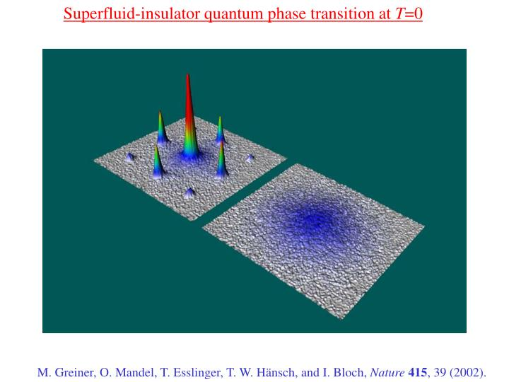 Superfluid-insulator quantum phase transition at