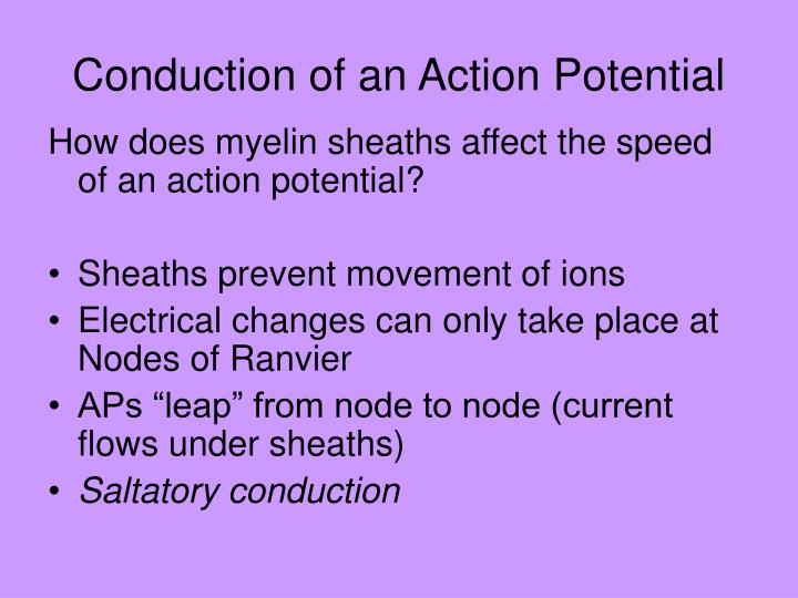 Conduction of an Action Potential