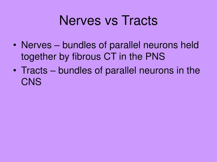 Nerves vs Tracts