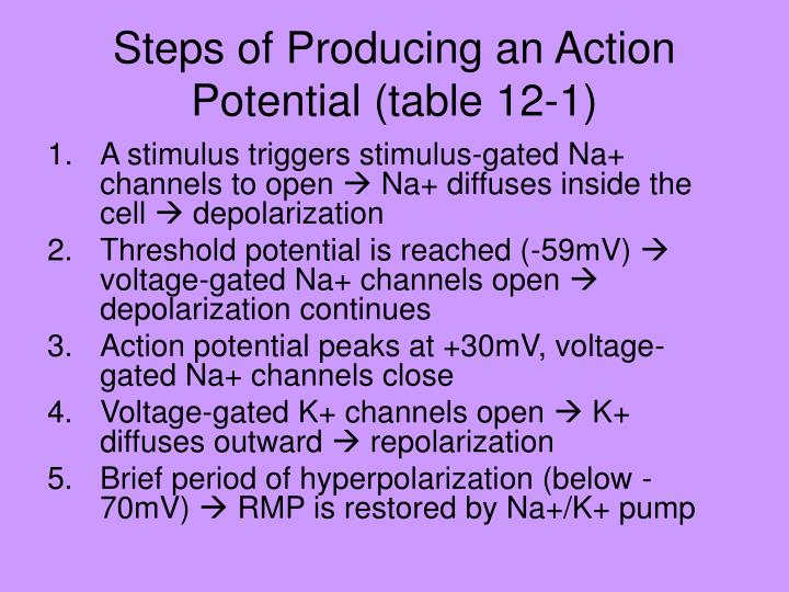 Steps of Producing an Action Potential (table 12-1)