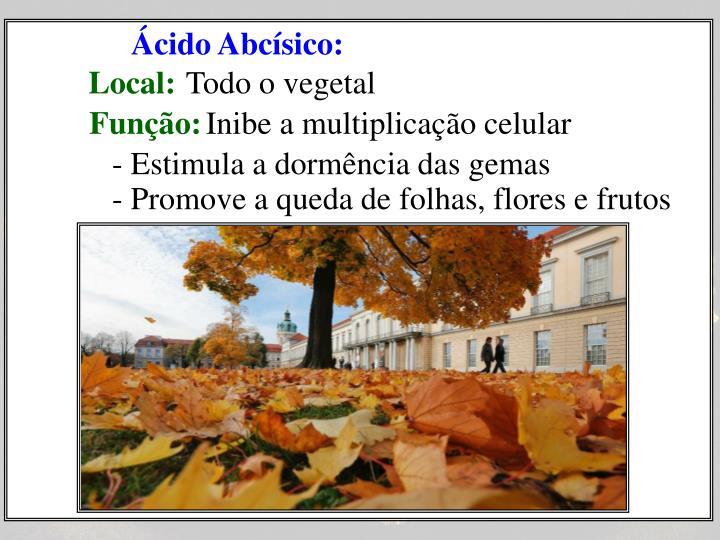 Ácido Abcísico: