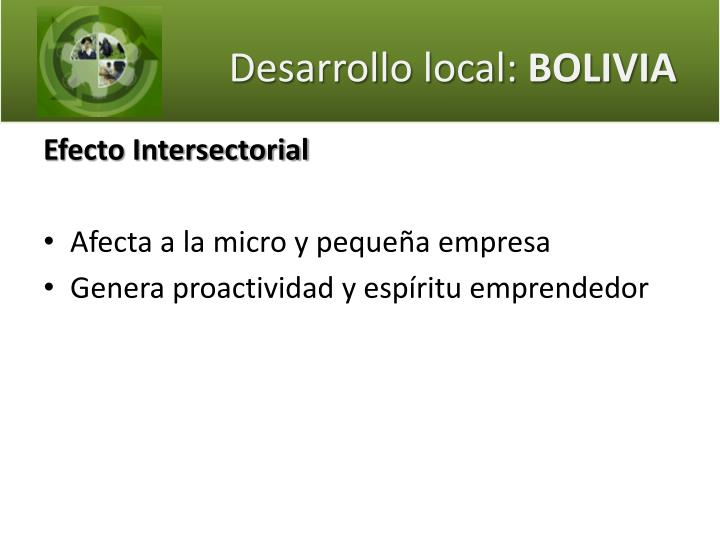 Desarrollo local: