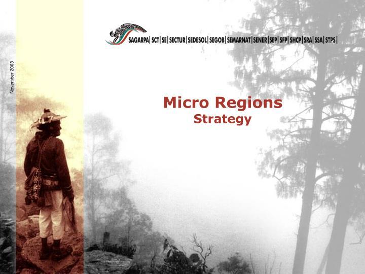 Micro Regions