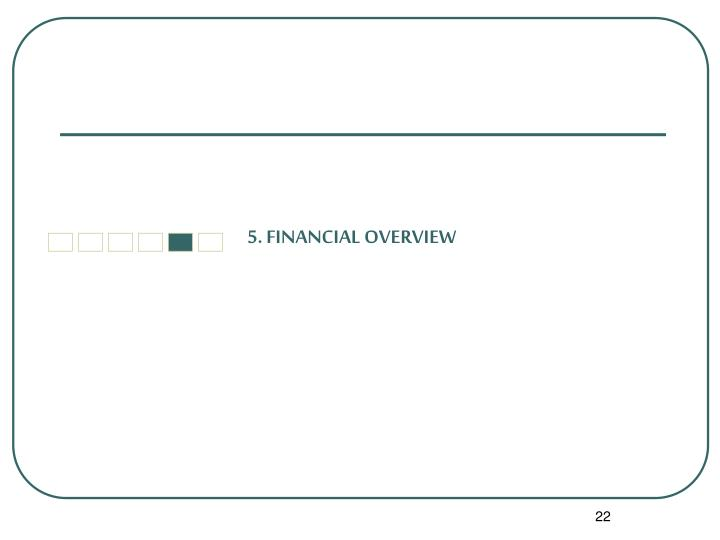 5. FINANCIAL OVERVIEW