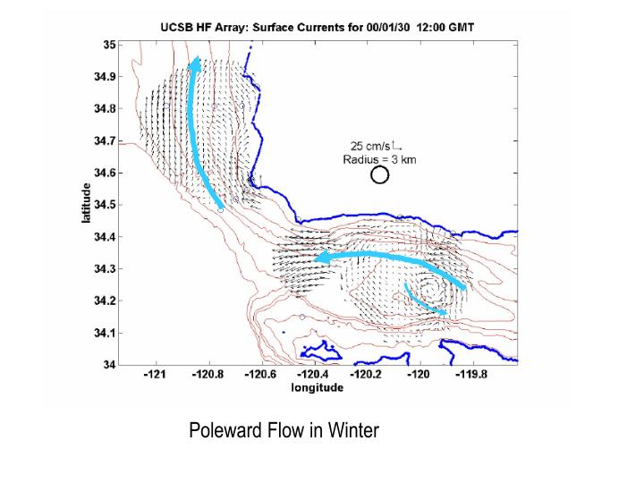 Poleward Flow in Winter