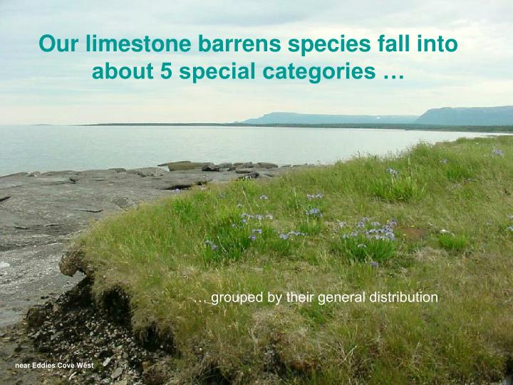Our limestone barrens species fall into about 5 special categories …