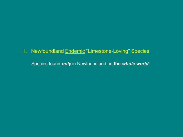 1.   Newfoundland