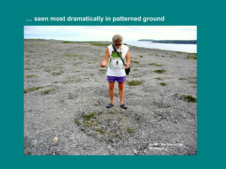 … seen most dramatically in patterned ground