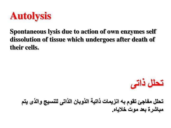 Autolysis
