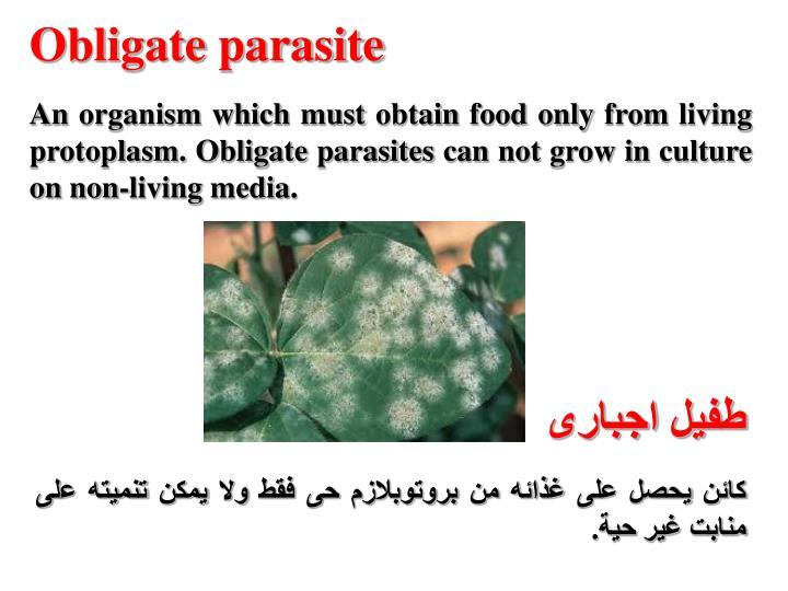 Obligate parasite