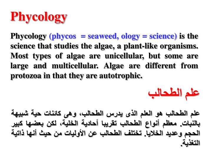 Phycology