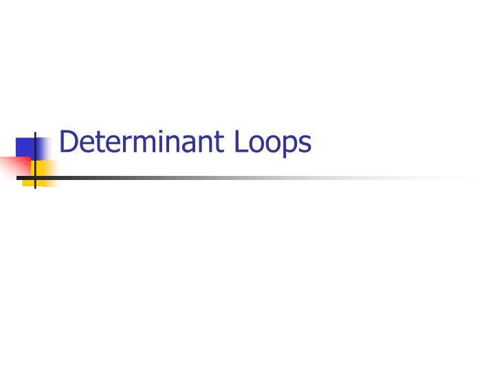 Determinant Loops