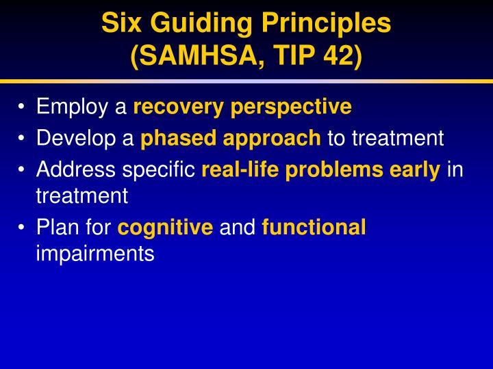 Six Guiding Principles