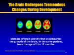 the brain undergoes tremendous changes during development