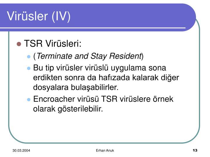 Virüsler (IV)