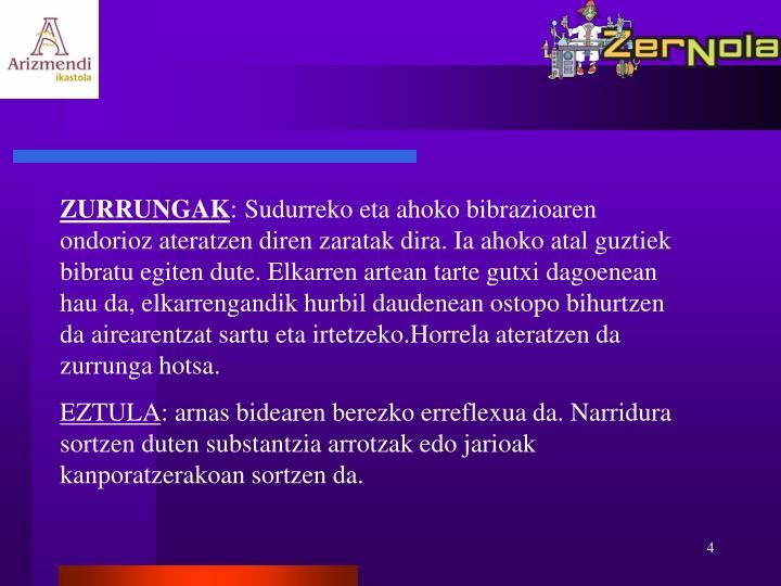 ZURRUNGAK