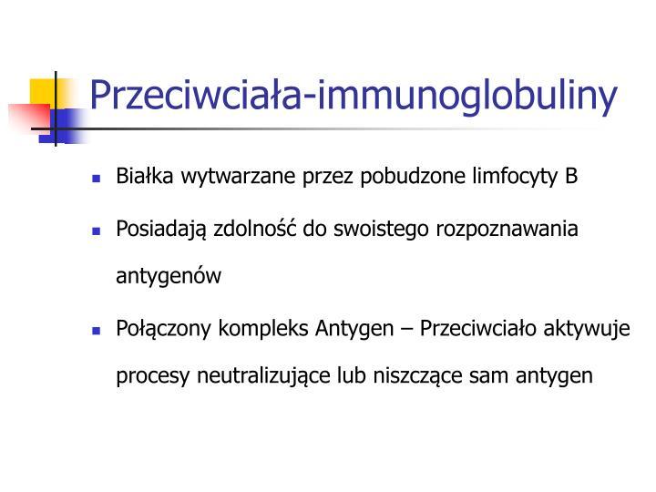 Przeciwciała-immunoglobuliny