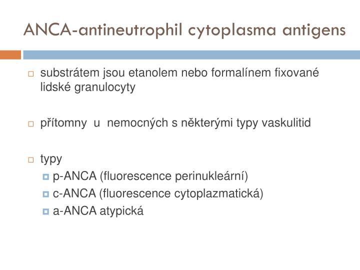 ANCA-antineutrophil cytoplasma antigens