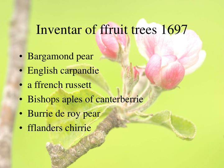 Inventar of ffruit trees 1697