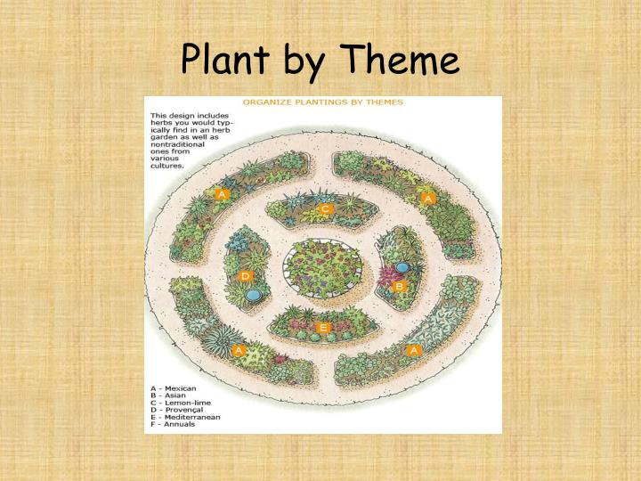 Plant by Theme