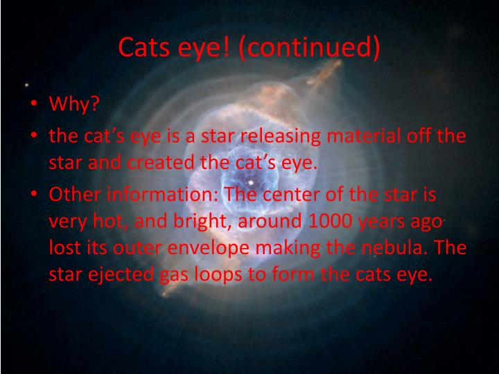 Cats eye continued