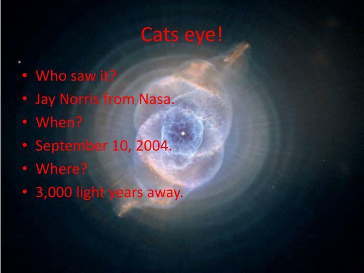Cats eye!