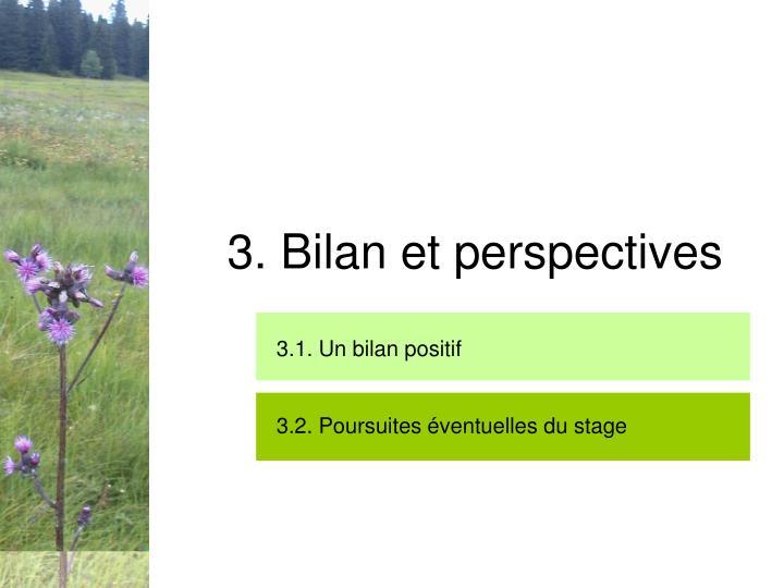 3. Bilan et perspectives